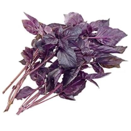 Фиолетовый базилик 50г