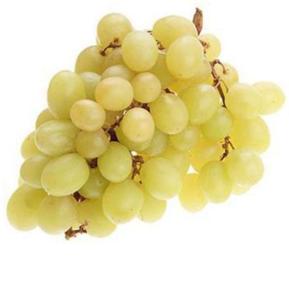 Виноград Томсон белый