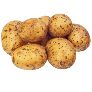Картофель гала немытый