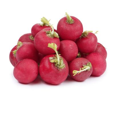 Редис красный
