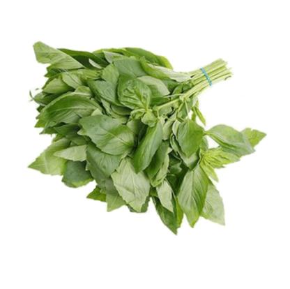 Зеленый базилик 50г