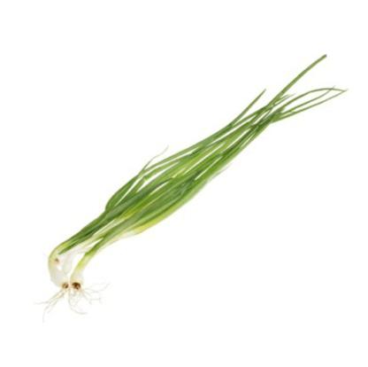 Зеленый лук 100г